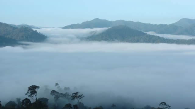 Clouds roll through forested valleys. Available in HD.