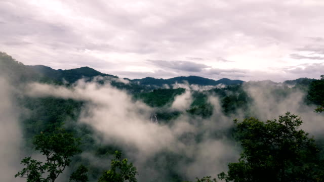 Clouds rolling in and out of thick,rain forest in the mountain range