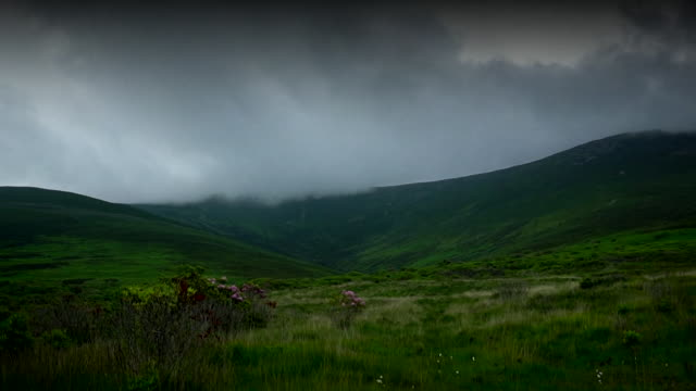 clouds rolling over hill, munster - wildflower stock videos & royalty-free footage