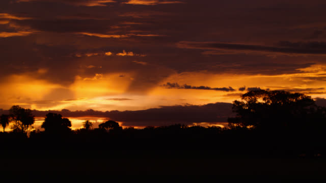 Clouds scud over silhouetted trees at sunset.