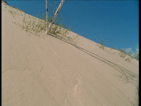 clouds scud overhead as shadows shift over sand, athabasca dunes, saskatchewan - saskatchewan stock videos and b-roll footage