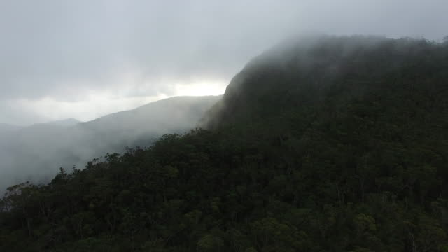 Clouds setting in over Mount Hamiguitan's pygmy (bonsai) forest.