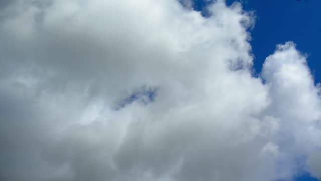 clouds - ローアングル点の映像素材/bロール