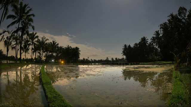 cloudscape in ubud district / bali, indonesia - ubud district stock videos & royalty-free footage