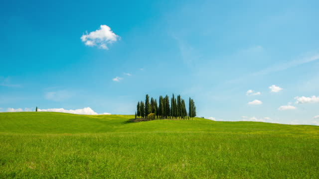 t/l 8k  cloudscape over cypress trees in the tuscany - natural landmark stock videos & royalty-free footage