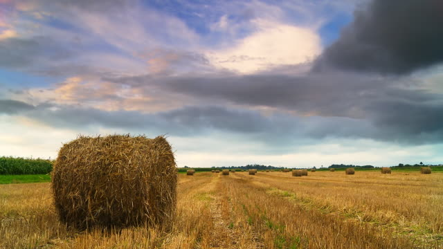 HD TIME LAPSE: Cloudscape Over Hay Bales