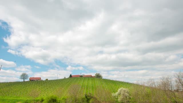 8k t/l cloudscape over the vineyard - prekmurje stock videos & royalty-free footage