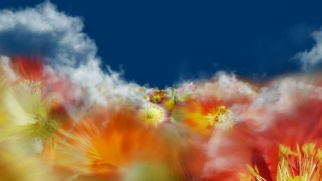 blooming geraniaceae field  - clouds/geraniaceae/blue (seamless loopable) - flowerbed stock videos & royalty-free footage