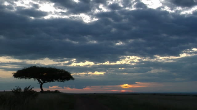 WS, Cloudy sky at sunset above savanna, Masai Mara Game Reserve, Rift Valley, Kenya