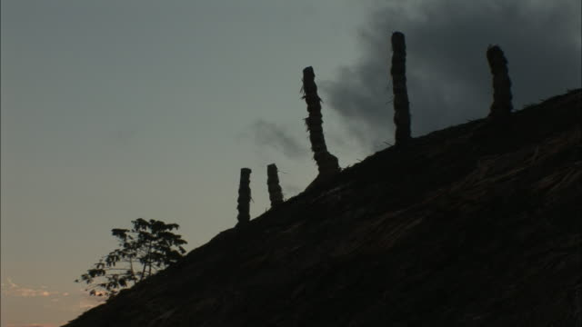 a cloudy sky outlines a thatched roof in india. - thatched roof stock videos & royalty-free footage