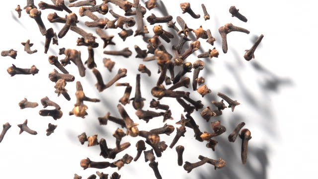 clove dancing in mid air with white background captured in high speed - geographical locations stock videos & royalty-free footage