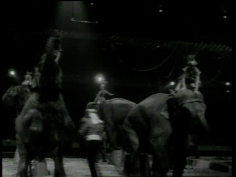 clown emmett kelly / elephant performers / jimmy durante performing from audience / clowns on barber shop set / gypsy rose lee on float - clown stock videos & royalty-free footage