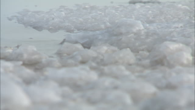 vídeos de stock, filmes e b-roll de clumps of salt form around the water's edge. - water form