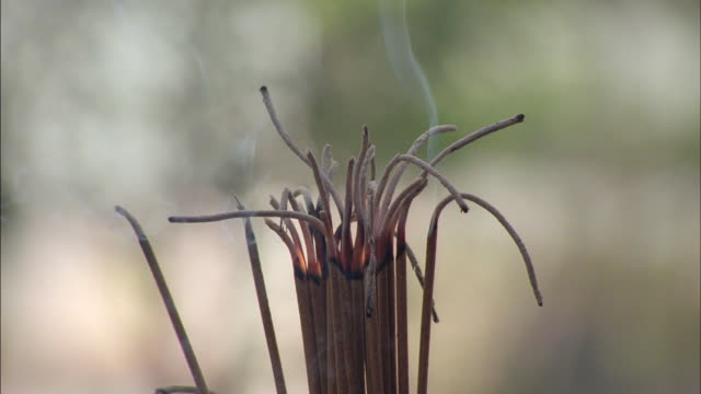 A cluster of incense sticks smokes as it burns slowly.
