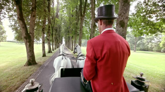 slo mo coachman in red uniform driving a horse carriage - horsedrawn stock videos & royalty-free footage