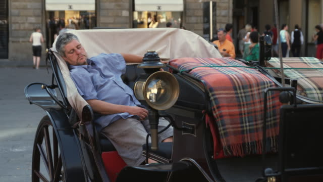 ms pan coachman sleeping in horse cart / florence, italy - napping stock-videos und b-roll-filmmaterial