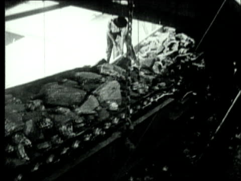 1927 b/w ms coal mine workers sorting large pieces of bituminous coal dropping from conveyor belt/ pennsylvania, usa - coal mine stock videos and b-roll footage