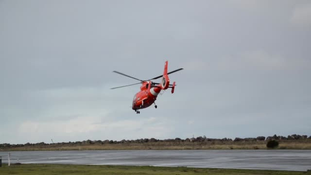 coast guard air station port angeles, washington aircrews conduct training off of neah bay, washington with their eurocopter mh-65 dolphin... - cetacea stock videos & royalty-free footage