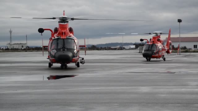 coast guard air station port angeles washington aircrews conduct training off of neah bay washington with their eurocopter mh65 dolphin helicopter... - cetacea stock videos and b-roll footage