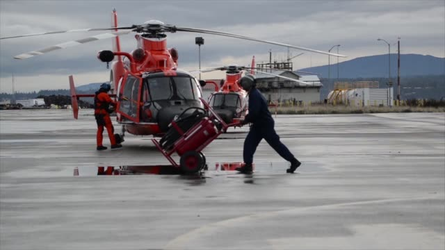 vídeos de stock, filmes e b-roll de coast guard air station port angeles washington aircrews conduct training off of neah bay washington with their eurocopter mh65 dolphin helicopter... - organismo aquático
