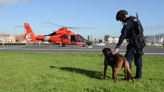 us coast guard and canine partner feco assigned to the maritime safety and security team 91105 based in alameda california conduct a vertical... - guardia costiera video stock e b–roll