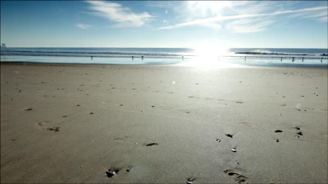 Coast - HD