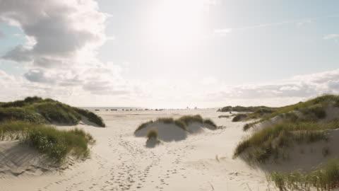 küstenlandschaft insel amrum - nordsee stock-videos und b-roll-filmmaterial