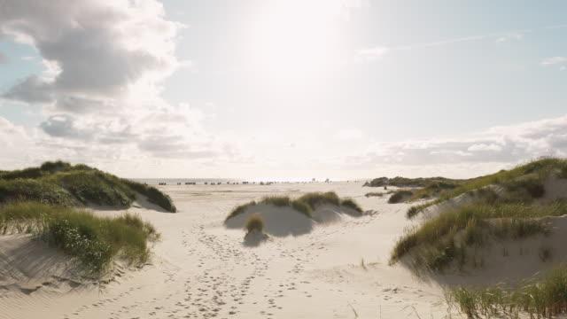 vídeos de stock, filmes e b-roll de ilha da paisagem costeira de amrum - mar do norte