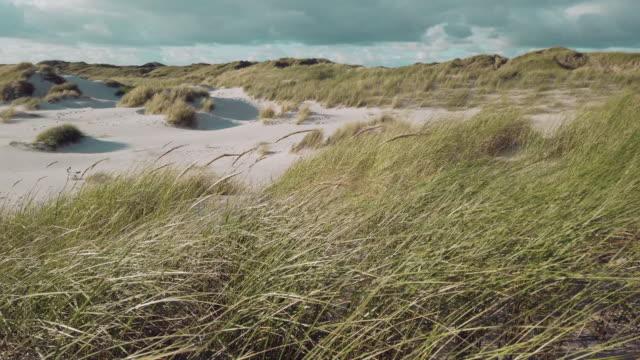 coast landscape island of sylt - coastal feature stock videos & royalty-free footage