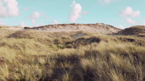 küstenlandschaft insel sylt - nordsee stock-videos und b-roll-filmmaterial
