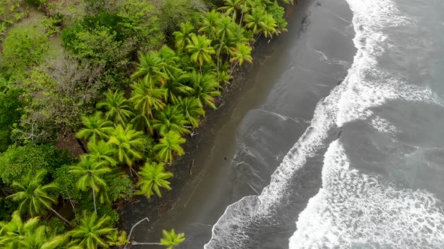 coast - costa rica stock videos & royalty-free footage
