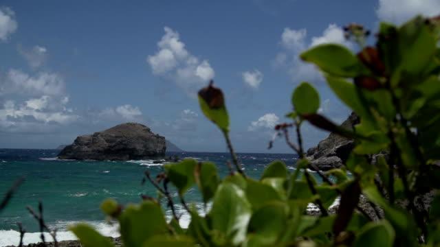 stockvideo's en b-roll-footage met coast with rocks - franse overzeese gebieden