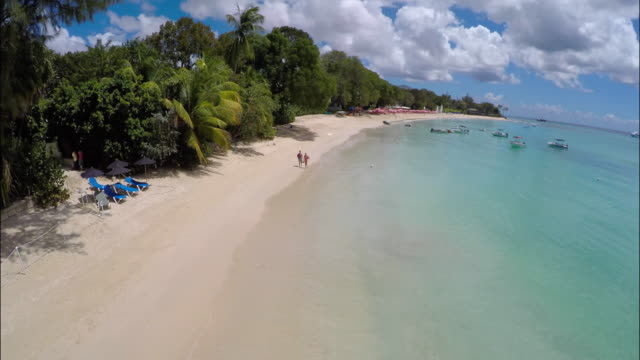 coastal beach resort / barbados, caribbean - caribbean sea stock videos and b-roll footage