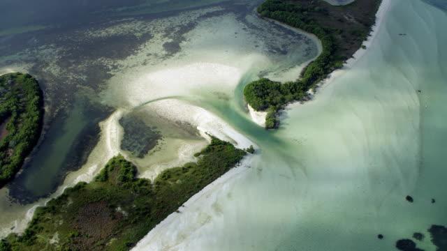 coastal estuary in yucatan mexico - estuary stock videos & royalty-free footage