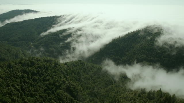 Coastal fog moves east over the Klamath Mountains into a valley of redwood forest in Northern California.