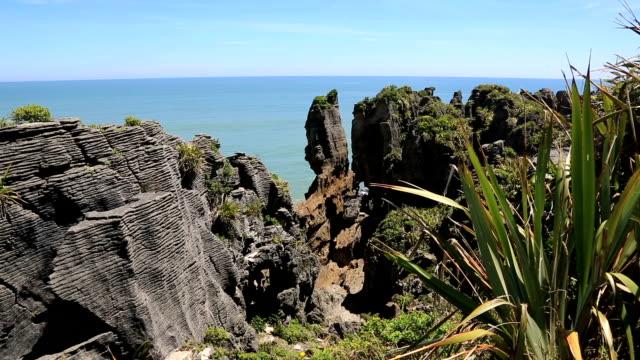Coastal Landscape of New Zealand South Island
