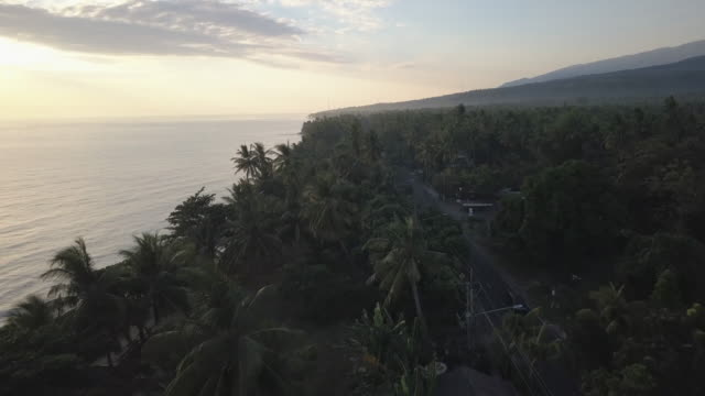 coastal road in bali / indonesia - tropical tree stock videos & royalty-free footage