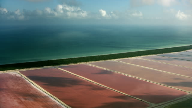 coastal salt lagoons in yucatan mexico - yucatan peninsula stock videos and b-roll footage