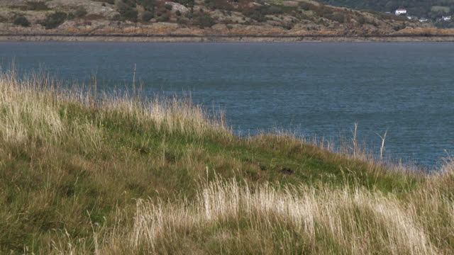 coastal scene in south west scotland - johnfscott stock videos & royalty-free footage