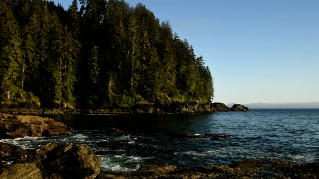 coastal time lapse - british columbia stock videos & royalty-free footage