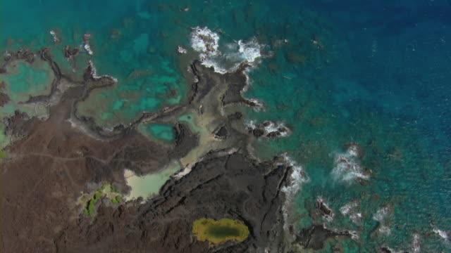 coastal volcanic rock in ahihi-kinau natural area reserve on the hawaiian island of maui. - tide pool stock videos and b-roll footage
