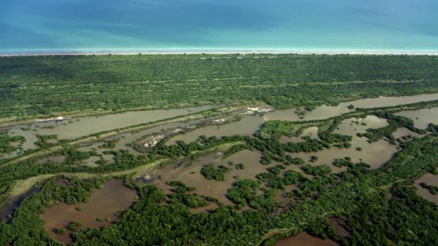 coastal wetlands area in yucatan - yucatan peninsula stock videos and b-roll footage