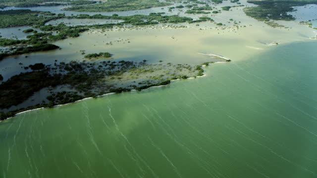 coastal wetlands at bioreserve in mexico - yucatan peninsula stock videos and b-roll footage