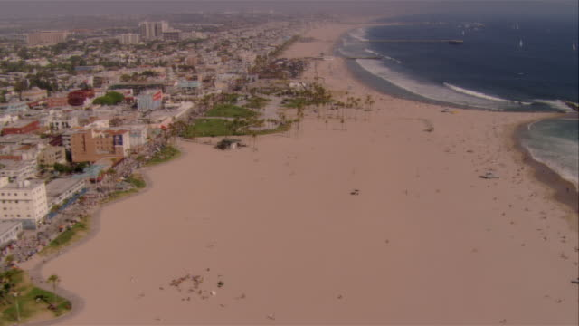 aerial coastline and beach, venice beach, california, usa - fan palm tree stock videos & royalty-free footage