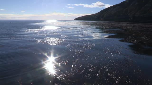 coastline and sunlight on calm sea, falkland islands - atlantik stock-videos und b-roll-filmmaterial