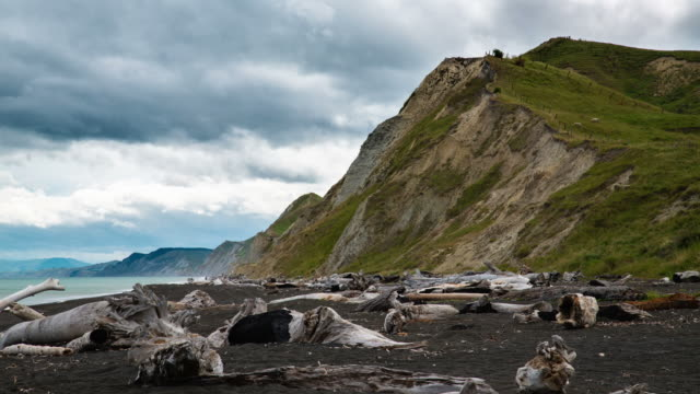 stockvideo's en b-roll-footage met time lapse: coastline hawkes bay new zealand - drijfhout