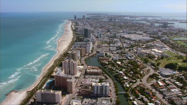 aerial, coastline, miami, florida, usa - fan palm tree stock videos & royalty-free footage