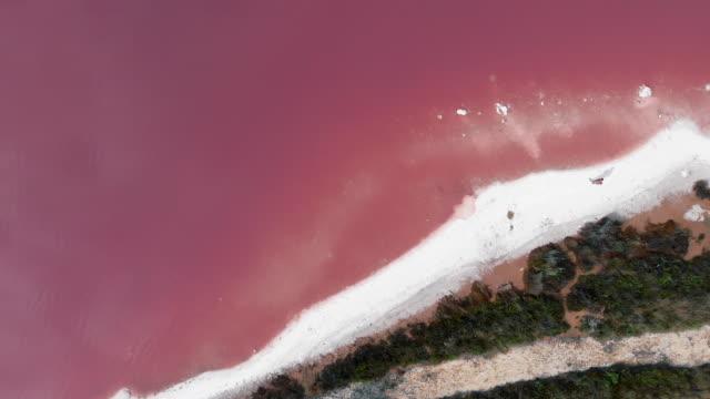 coastline of salt lake of torrevieja - pink stock videos & royalty-free footage