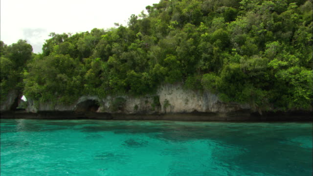 coastline, rock isle travel, palau, south pacific  - palau stock videos & royalty-free footage
