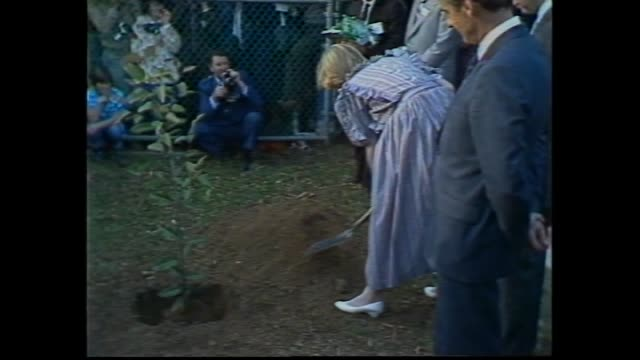 stockvideo's en b-roll-footage met princess diana out of car greet officials / prince charles and diana shown map victorian ash wednesday bushfire areas / meet emergency services... - 1983